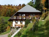Ferienhaus Rombach, Ferienwohnung A 42qm, 1 Schlafraum, 1 Wohn--Schlafraum, max. 4 Personen , 1 - 4  in Wieden - kleines Detailbild
