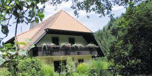 Haus Brigitte - Hintere Mühle, Ferienwohnung 40qm Blumenwiese in Horben - kleines Detailbild
