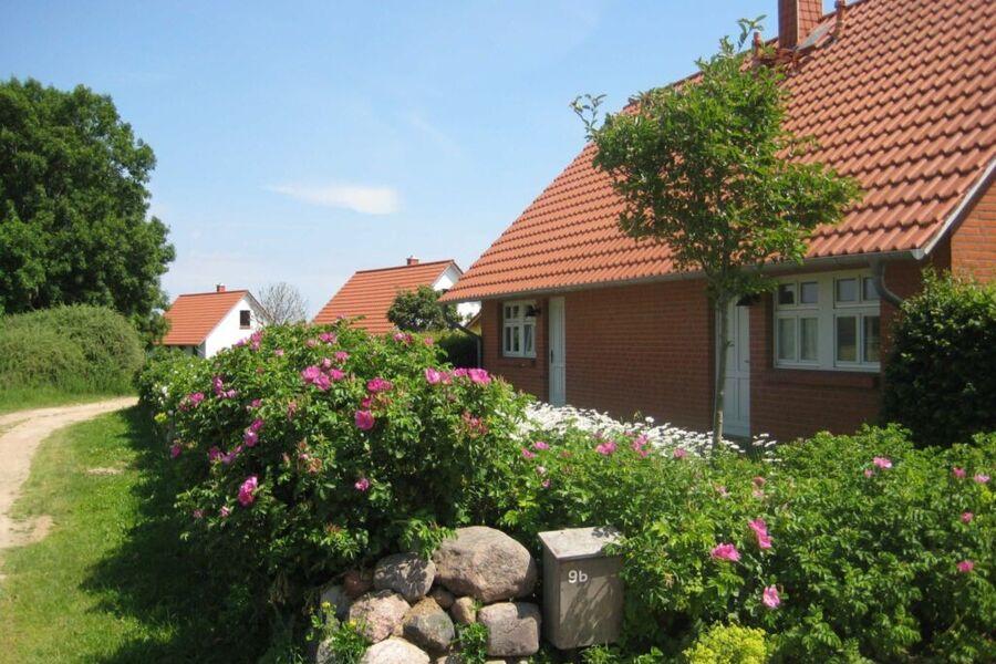 Gartenseite vom Haus