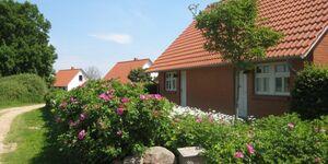 Ferienhäuser 1 -4 in Quilitz, Haus 4 in Quilitz - kleines Detailbild