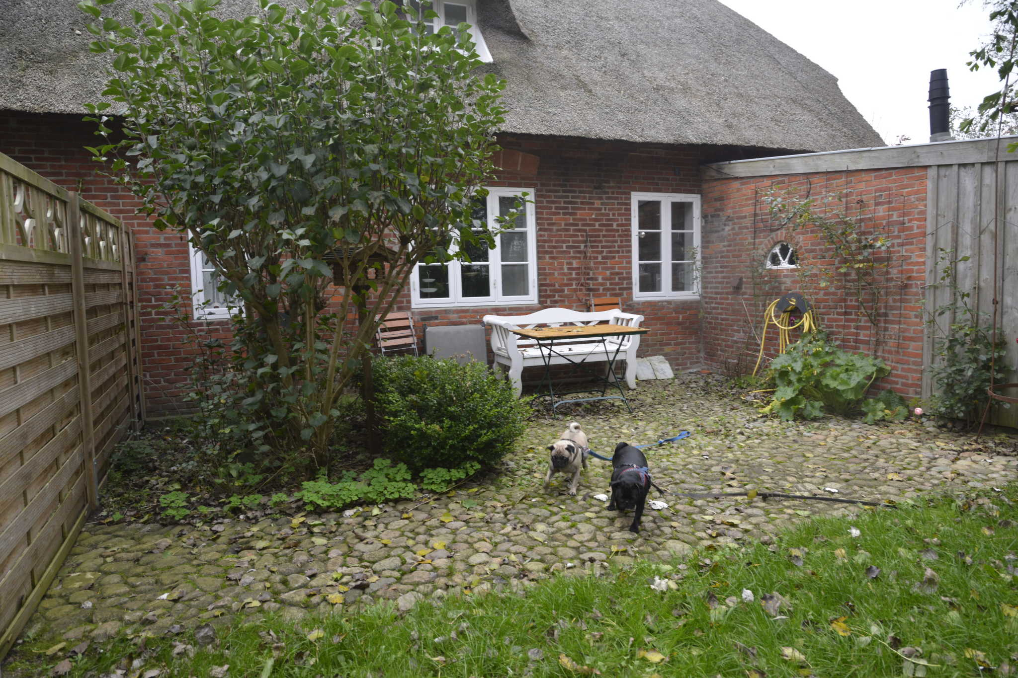 friesenhaus 39 schohmaker huus 39 haus hans in aventoft schleswig holstein petra sattelberg. Black Bedroom Furniture Sets. Home Design Ideas
