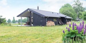 Ferienhaus in Hundested, Haus Nr. 94293 in Hundested - kleines Detailbild