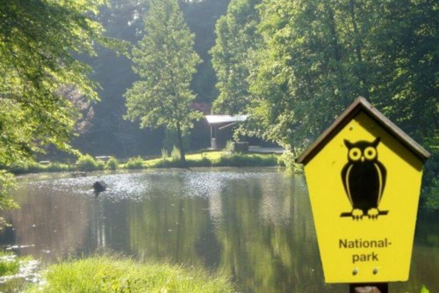Kleiner Waldsee im Nationalpark