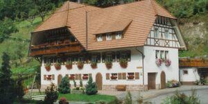 Venturhof, Ferienwohnung 'Tal' in Wolfach - kleines Detailbild