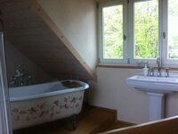 Das Gästehaus, Doppelzimmer 200er-Bett, Küche, Bad, Sonnen-Dachterasse in Offenburg - kleines Detailbild