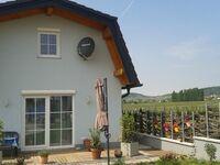 Ferienhaus BB, BB Ferienhaus 1 in Traiskirchen - kleines Detailbild