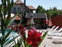Ferienhaus mit Pool, WLAN für 8 Personen direkt am Wasser, Ferienhaus mit Pool, WLAN für 8 Personen  in Balatonmariafürdö - kleines Detailbild