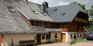Ferienwohnung Schweizer, Ferienwohnung 'Monita' 60qm, 1 Schlafraum, 1 Wohn--Schlafraum, max. 4 Perso in Bernau - kleines Detailbild