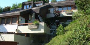 Haus Sonnenhang, Panoramablick in Todtnau - kleines Detailbild