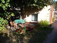 Ferienhaus - 67471 in Malchow - kleines Detailbild