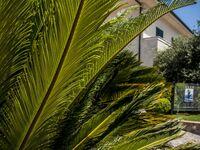 Residence Oliveto a Mare, Appartement-Ferienwohnung BILOCALE EXECUTIVE C in Marina di Ascea - kleines Detailbild