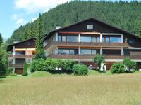 Berghaus Tirol, Luxus-Appartement Alpenpanorama ***** in Seefeld - kleines Detailbild