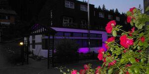 Schwarzwalder Family Resort, Apartment 4 in Enzklösterle - kleines Detailbild