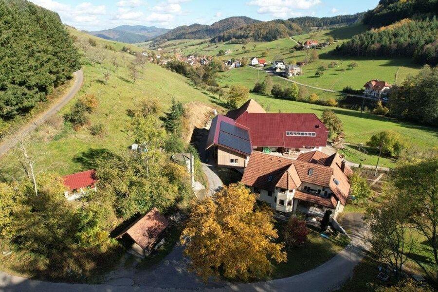 Blick auf Welschensteinach