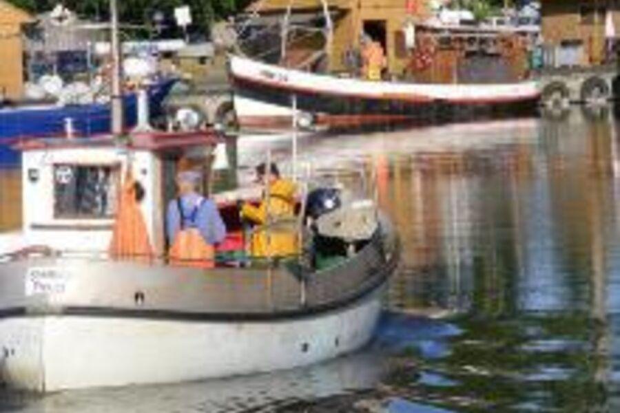 Hafen mit einlaufenden Fischerboot