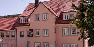 Gasthaus Kranz, Apartment -  FeWo 1 in Stühlingen - kleines Detailbild