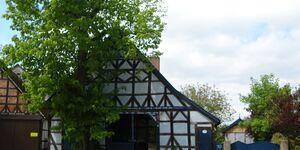 Haus Lavendel in Küsten - kleines Detailbild