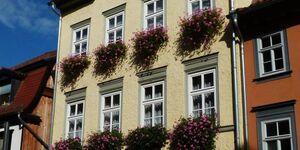 Ferienwohnung Am Moritzhof in Erfurt - kleines Detailbild