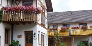 Meyerhof  Gästehaus Brunhilde, Ferienwohnung 49m² , 2 - 4 Personen in Schwanau Wittenweier - kleines Detailbild