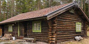 Ferienhaus in Lenhovda, Haus Nr. 99424 in Lenhovda - kleines Detailbild
