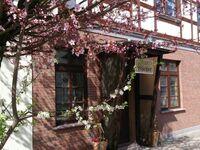 Hotel Blücher Tet, Nr. 10 Einzelzimmer in Teterow - kleines Detailbild