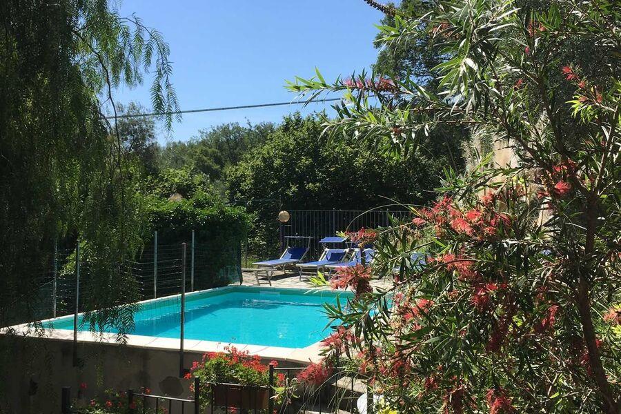 Pool im mediterranen Ambiente