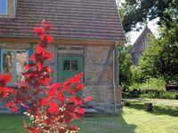 Urlaub im Pfarrhaus Petschow, Ferienwohnung Pastor Hauswedel in Petschow - kleines Detailbild