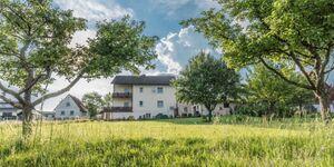 Ferienwohnung Pamale in Michelstadt-Vielbrunn - kleines Detailbild