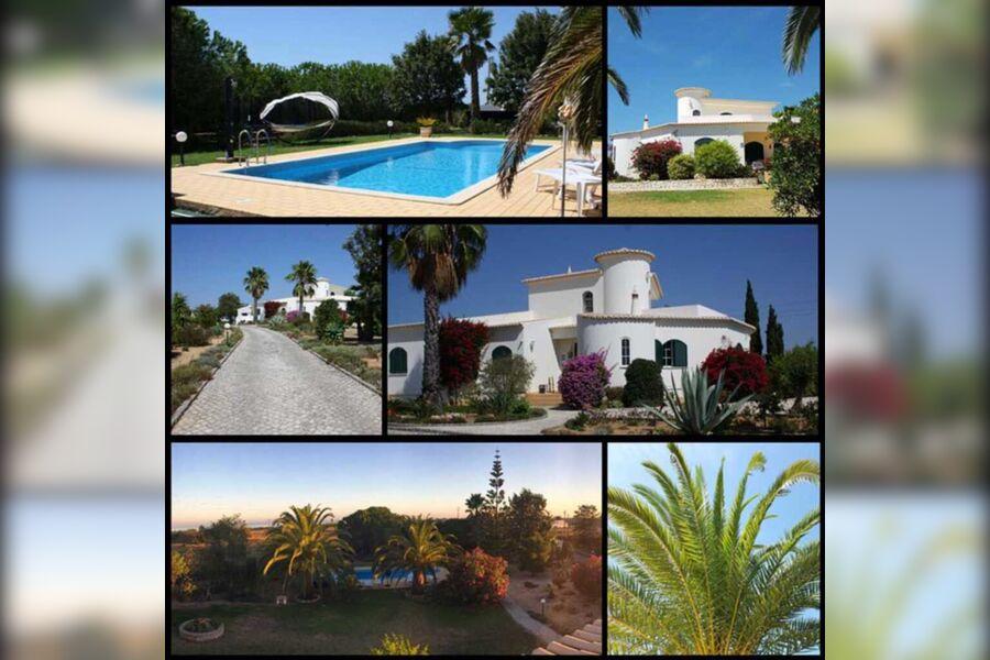 2 Ferienwohnungen in alleinliegender Villa, 1 Stud