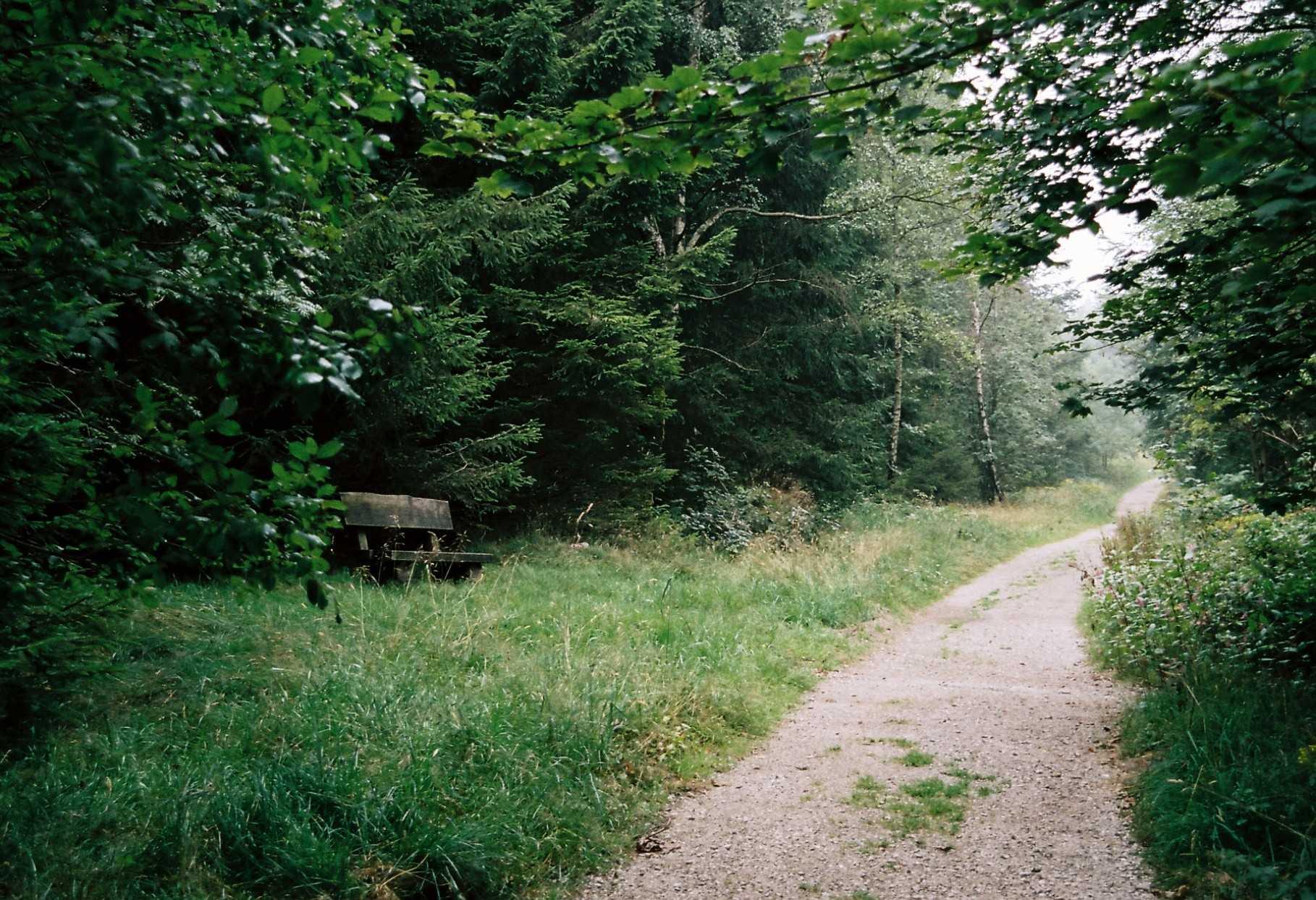 schöner Wanderweg