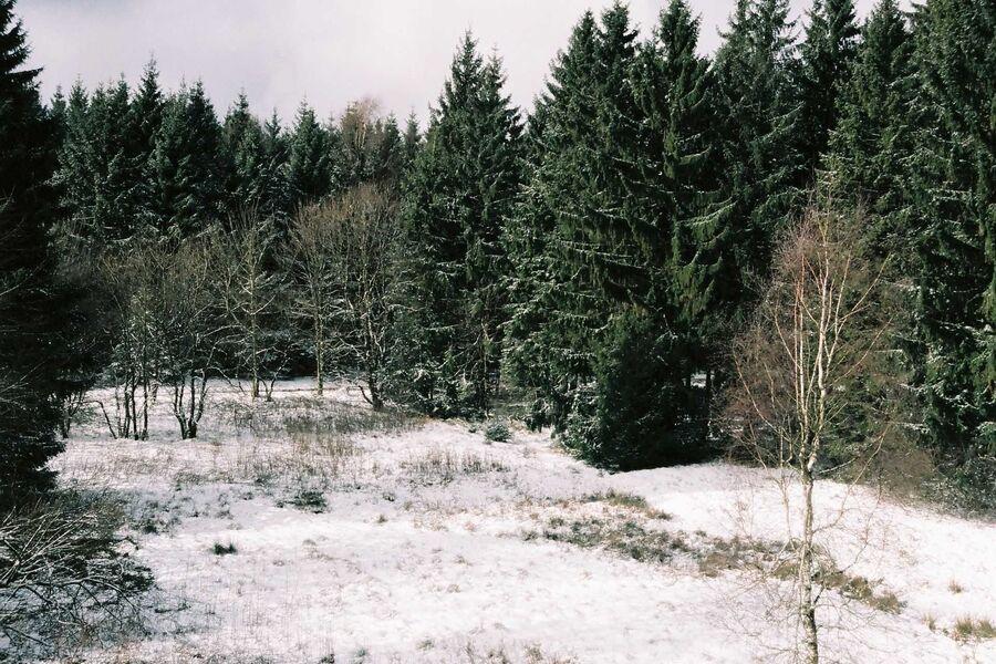 der Ausblick vom Wohnzimmer im Winter