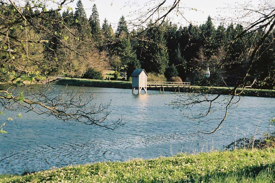 am Kranicher Teich, ganz in der Nähe