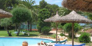 Ferienwohnung Carrer Joaquim Blume in Paguera - kleines Detailbild