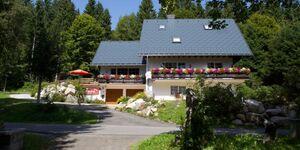 Haus Sonneck, Familienzimmer mit Balkon in Schluchsee - kleines Detailbild