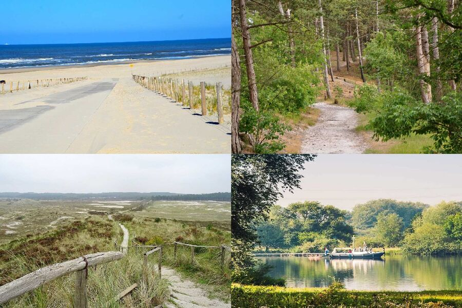 Strand/Wald/Dünen/Fahren