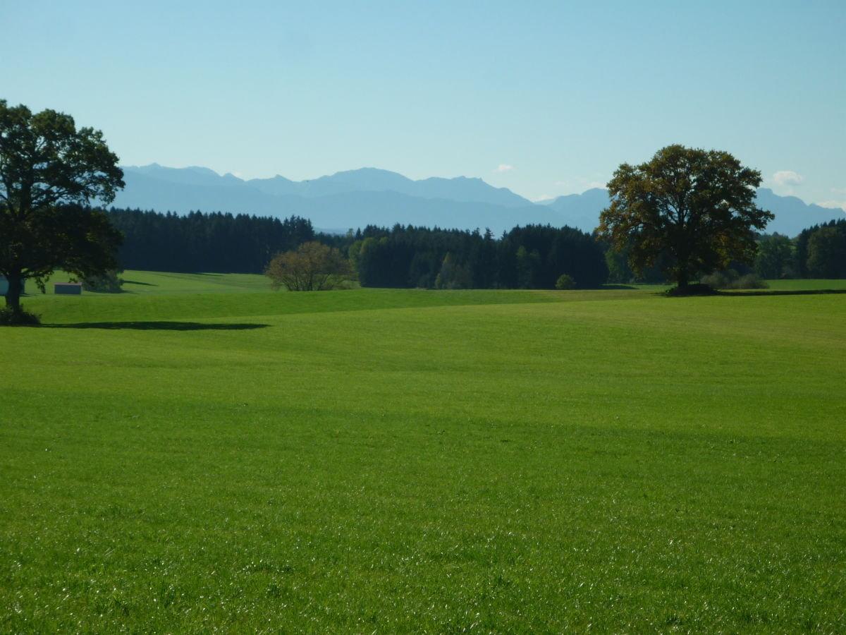 Blick in die Allgäuer Alpen