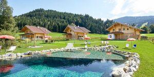 Lehenriedl Rosen-Chalets, Chalet Alpenrose in Wagrain - kleines Detailbild