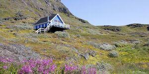 Ferienhaus Isikkivik in Narsaq - kleines Detailbild