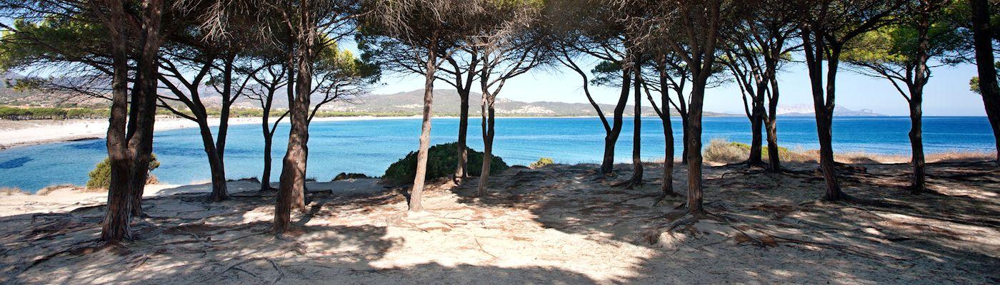 budoni sardinien strand ferienwohnungen