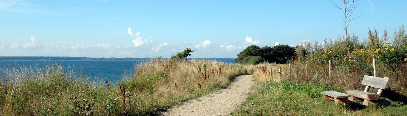 eckernfoerder bucht strand ostsee holzbank