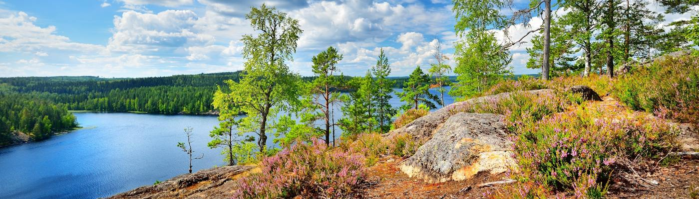 finnland see wald