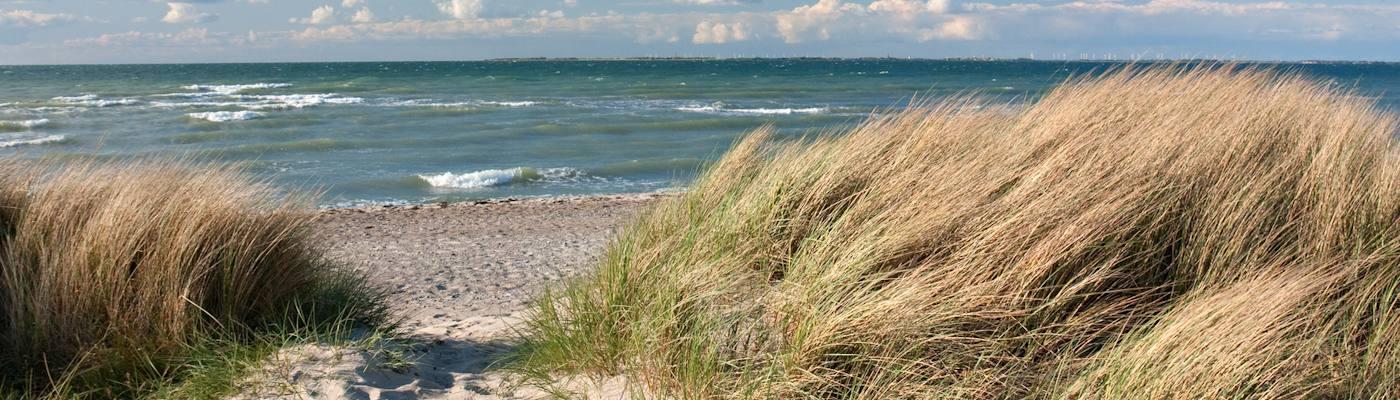 heiligenhafen strand hafer ostsee