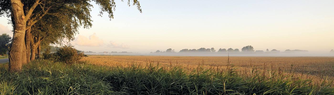 leck suedtondern nebel urlaub buchen
