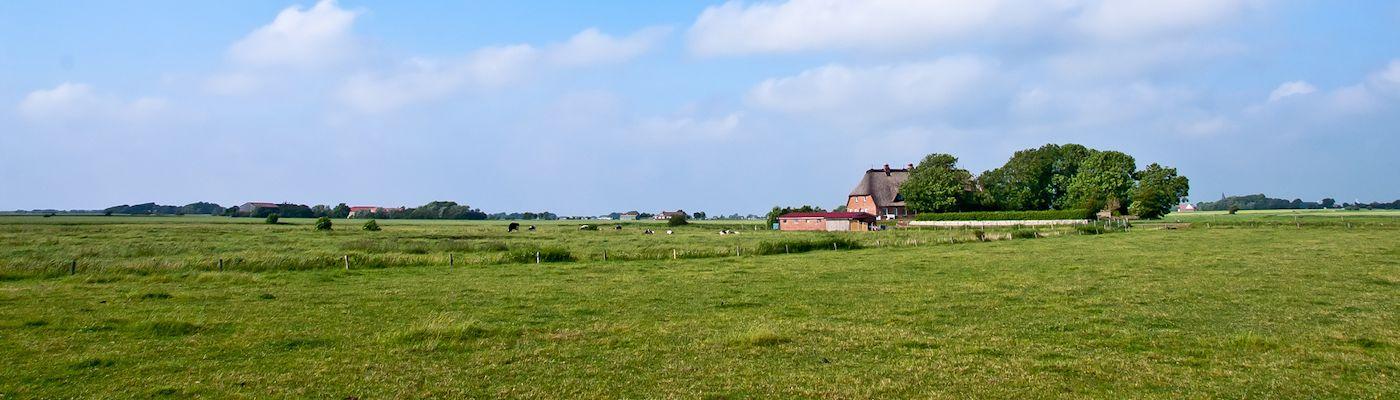nordfriesland ferienwohnungen ferienhaeuser buchen