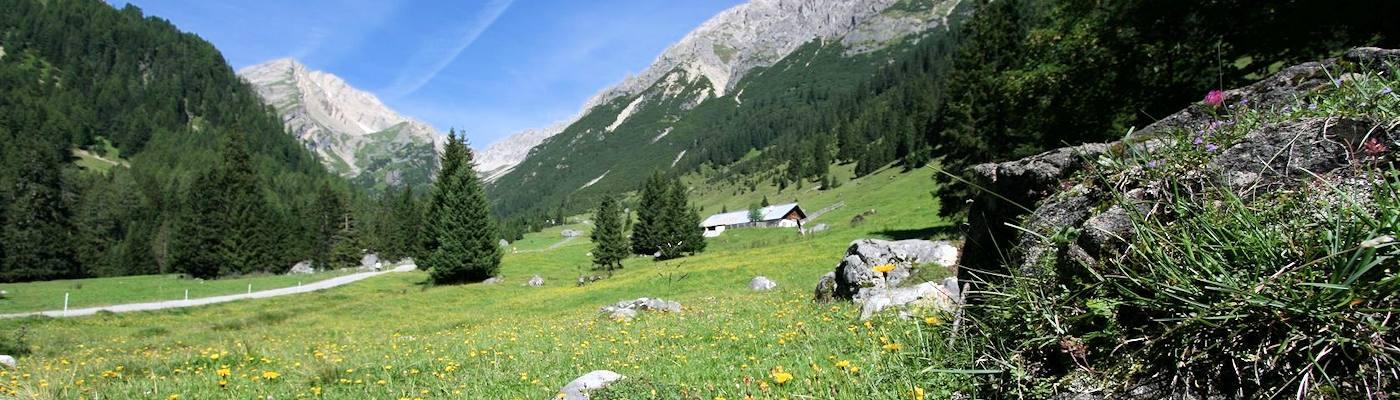 oetztal ferienhaus wiese alpen
