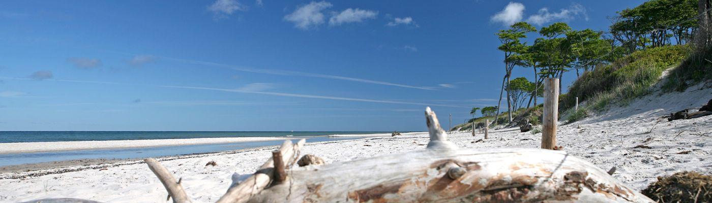 prerow strand ostsee