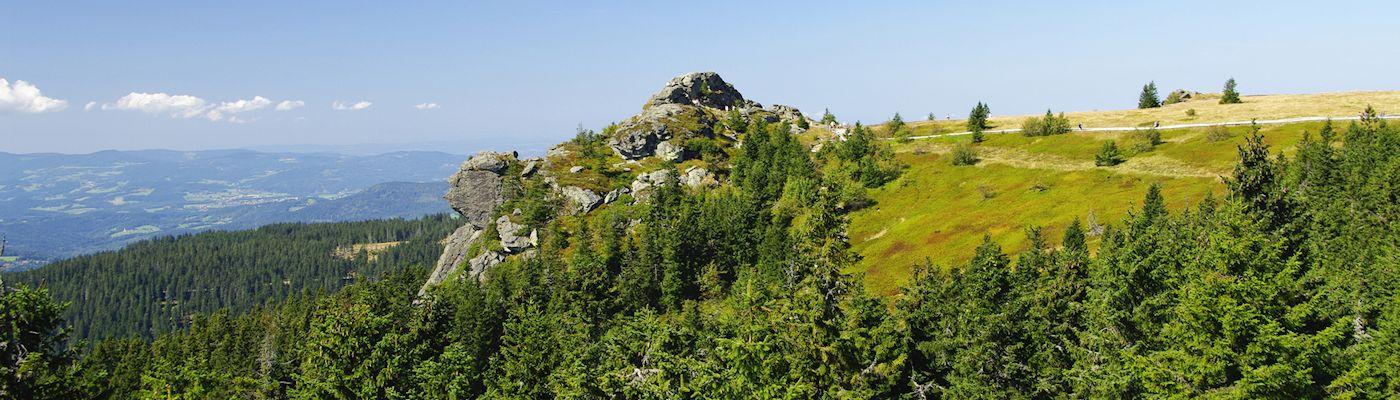regen und umgebung bayerischer wald ferienhaeuser ferienwohnungen