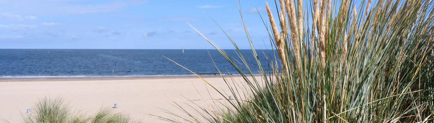 renesse niederlande strand ferienhaus