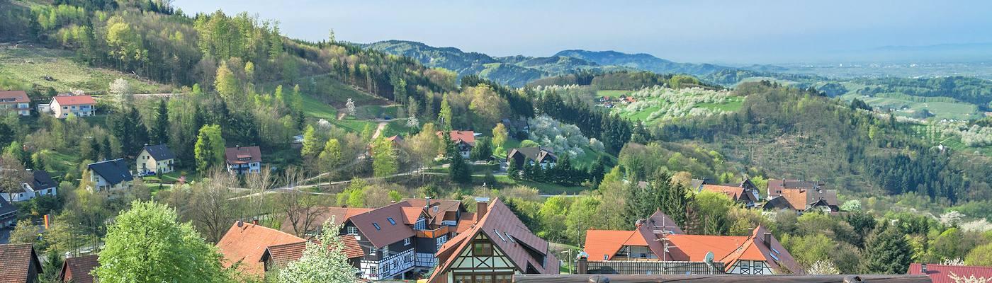 Ferienwohnung Ferienhaus Im Mittleren Schwarzwald Mieten