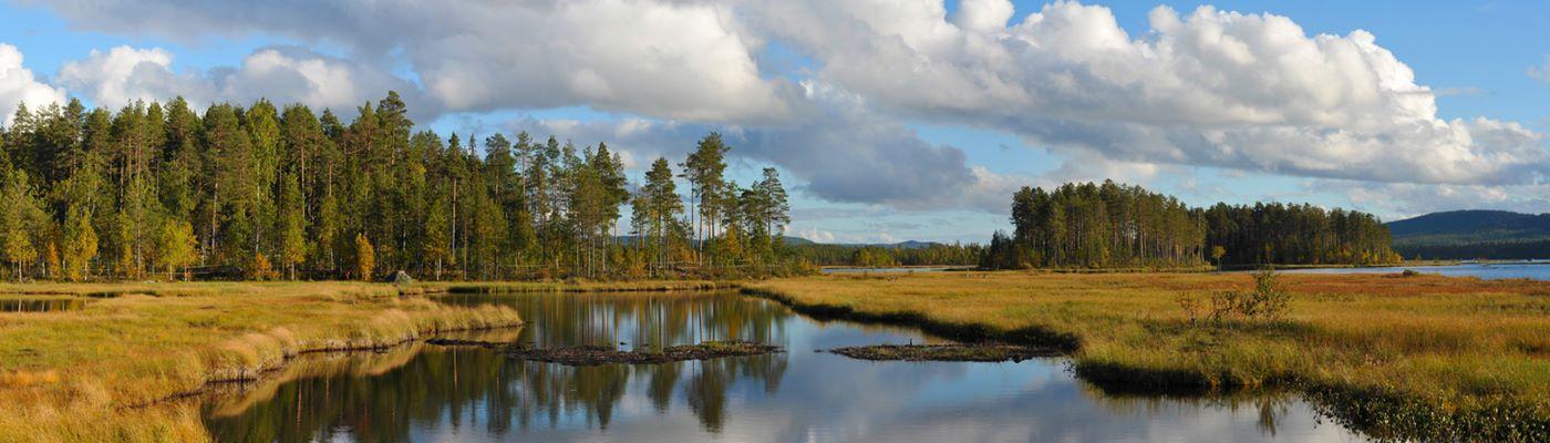 vaermland schweden ferienhaus buchen
